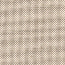 "Cialinen Bookcloth - 39"" wide"